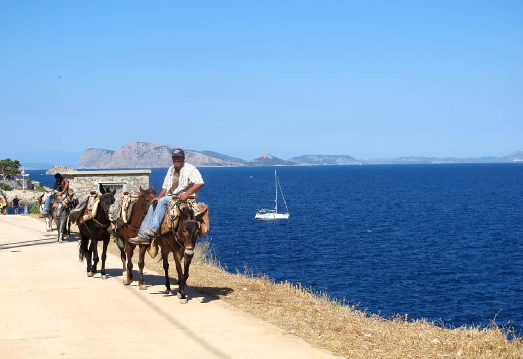 a man rides a donkey along the sea in Hydra Island