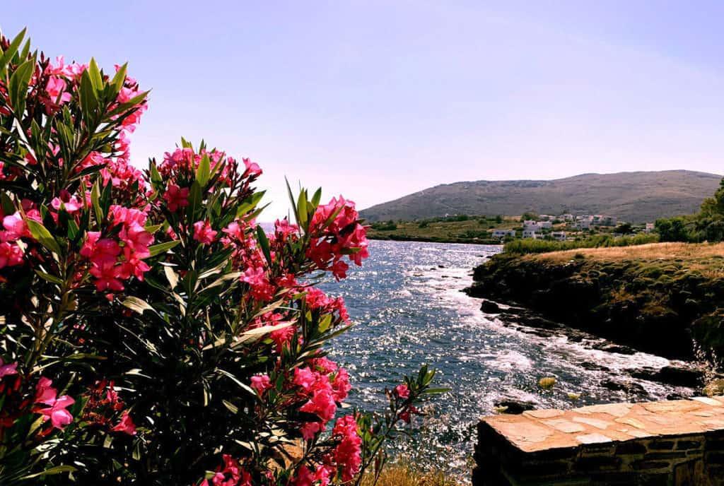 coastline of tinos island